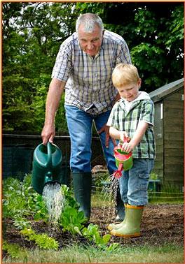 nurture factors influencing child development