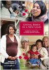 Giving Birth in a New Land - A guide for women new to Canada and their families - Booklet